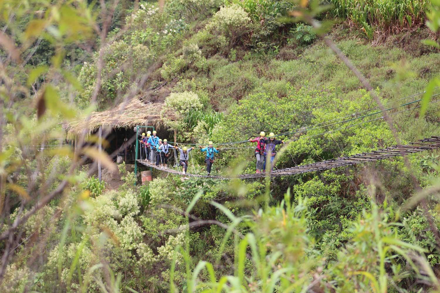 Inca Jungle Trek Bridge